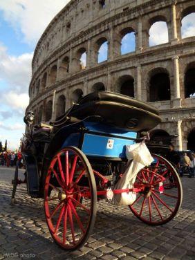 Botticella al Colosseo